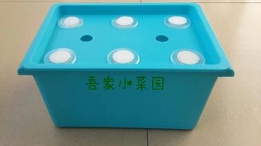 小型箱式6孔种植箱无土栽培
